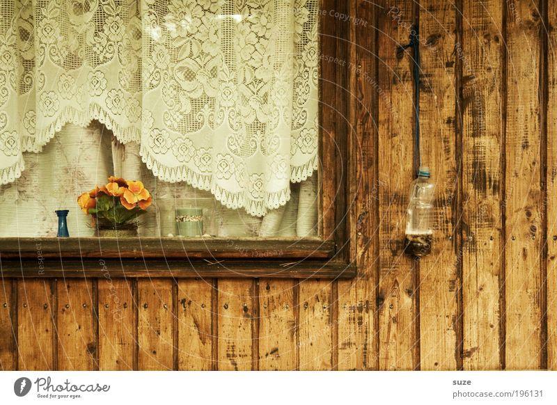 Fensterstock Häusliches Leben Wohnung Blume Hütte Holz alt einfach retro braun Nostalgie Vergangenheit Vergänglichkeit Kunstblume Blumentopf Ferienhaus Gardine