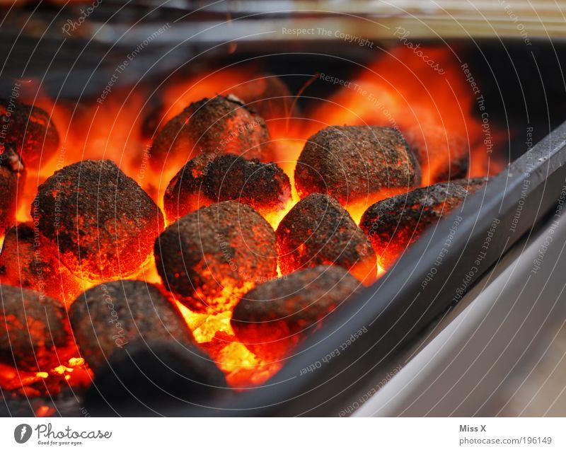 Grillkohle Camping heiß glühen Grillen Grillrost Farbfoto mehrfarbig Außenaufnahme Nahaufnahme Detailaufnahme Menschenleer Tag Abend Schwache Tiefenschärfe