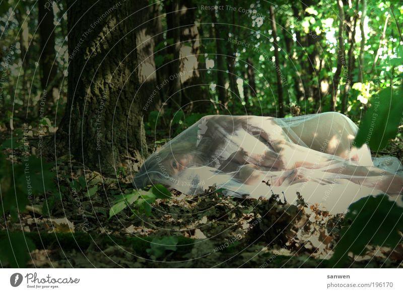 waldgeist feminin Körper Haut Natur Erde Sonnenlicht Sommer Schönes Wetter Wärme Pflanze Baum Wald Stoff blond langhaarig genießen liegen Blick schlafen träumen
