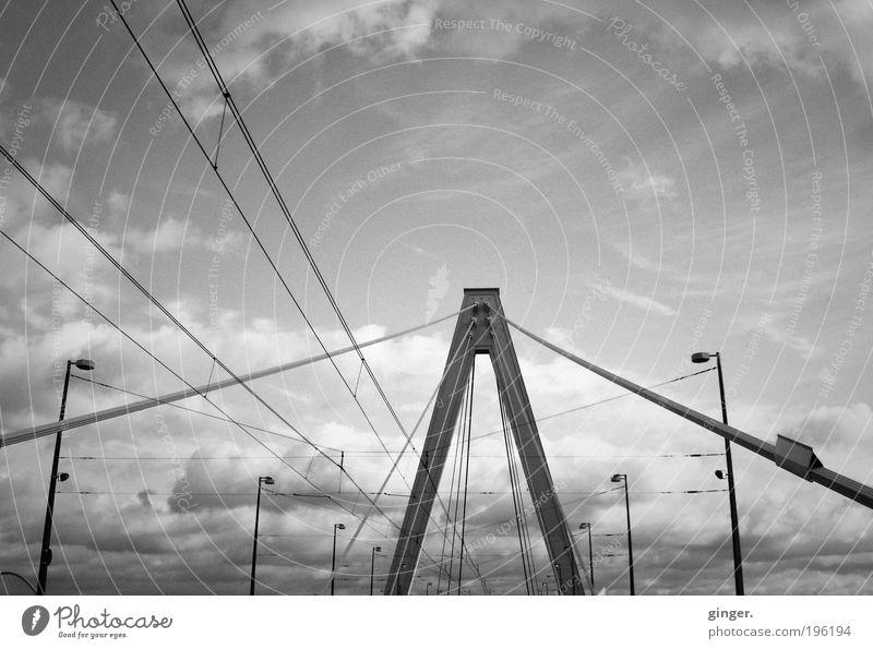 Severinsbrücke Köln Brücke Bauwerk Architektur Verkehrswege ästhetisch groß hoch lang oben stark Schrägseilbrücke Rheinbrücke Balkenbrücke Pylon Himmel Wolken