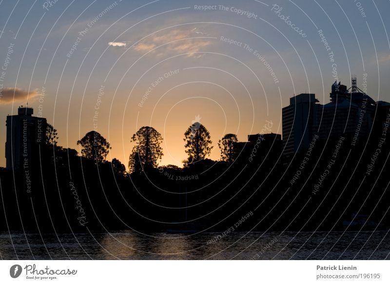 getting dark Baum Blick Stadt Haus Silhouette blau Himmel Sonnenuntergang Warmes Licht Romantik schön ruhig Erholung Wasser Hochhaus Kontrast dunkel Nacht