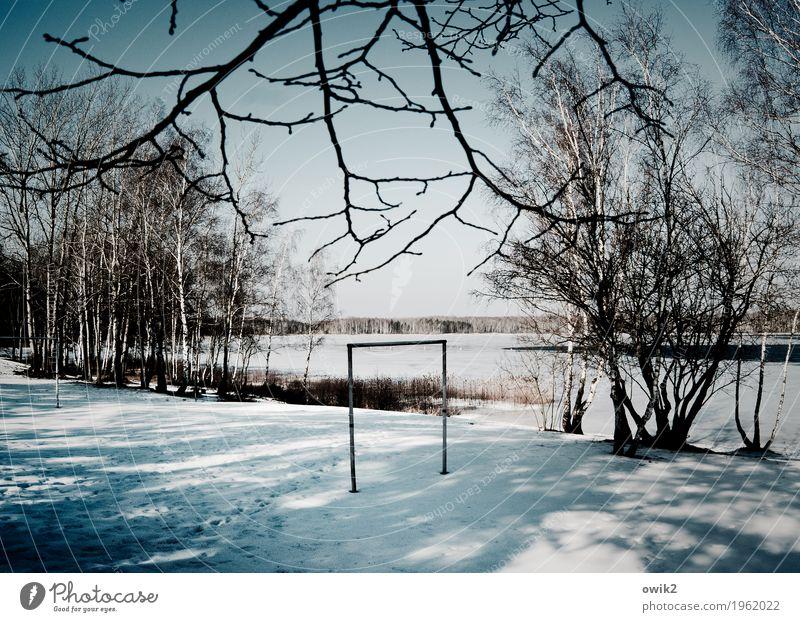 Torlos Umwelt Natur Landschaft Wolkenloser Himmel Horizont Winter Schönes Wetter Eis Frost Schnee Baum Sträucher See Holz stehen warten hell kalt trist geduldig