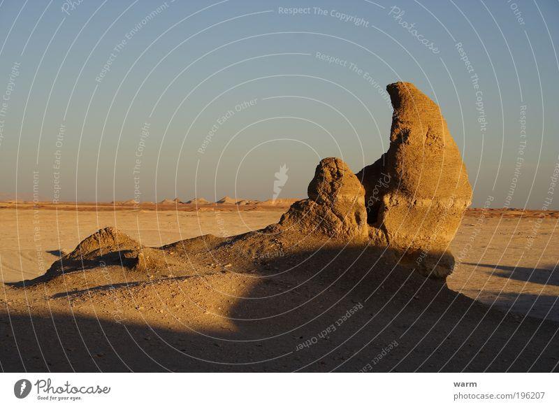 Kommt da ein versteinertes Nashorn aus der Erde? Natur Himmel ruhig Ferne Berge u. Gebirge Landschaft Umwelt Wüste Schönes Wetter Fernweh Afrika Ägypten Abend Tier Wolkenloser Himmel Nashorn