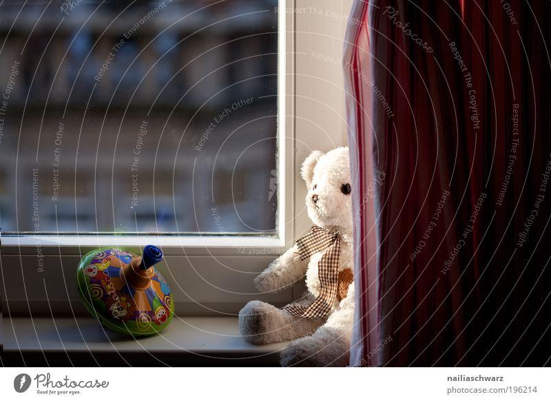 Am Fenster Freizeit & Hobby Spielen Häusliches Leben Wohnung Dekoration & Verzierung Kinderzimmer Spielzeug Teddybär Kreisel Gefühle Zufriedenheit Lebensfreude