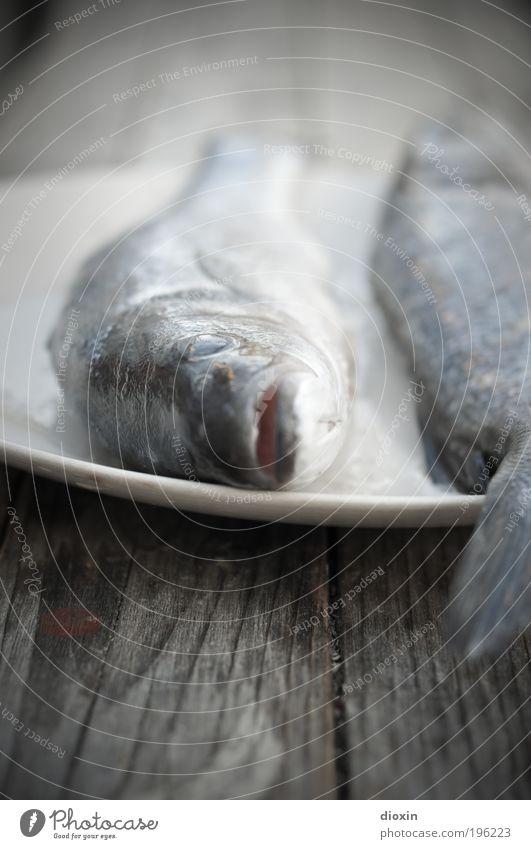 Es gibt Fisch, Baby! Lebensmittel Ernährung Mittagessen Abendessen Tier Totes Tier Tiergesicht Schuppen 2 kalt blau Forelle Fischauge Fischgericht Holz Teller