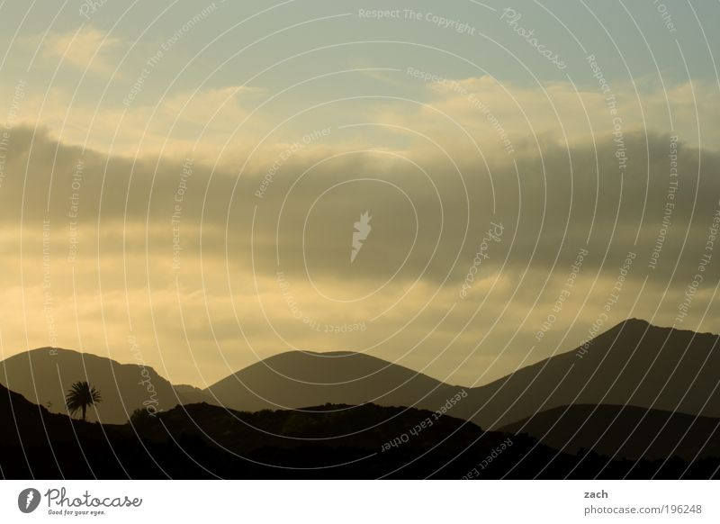 Palmsonntag am Vulkan Ferien & Urlaub & Reisen Ferne Sommerurlaub Sonne Berge u. Gebirge Umwelt Natur Landschaft Himmel Sonnenaufgang Sonnenuntergang