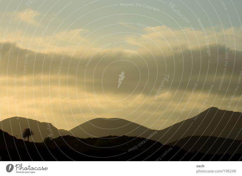 Palmsonntag am Vulkan Natur schön Himmel Sonne Pflanze Ferien & Urlaub & Reisen Ferne dunkel Erholung Gefühle Berge u. Gebirge Landschaft Umwelt Felsen ästhetisch Insel
