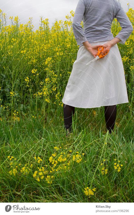 Rapsmörderin Natur Jugendliche grün Pflanze Sommer Umwelt Landschaft feminin grau Junge Frau Feld Rücken Klima stehen bedrohlich einzigartig