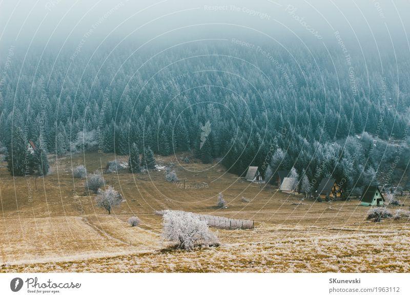 Schönes Ladnscape des Kiefernwaldberges im Winter. schön Ferien & Urlaub & Reisen Schnee Berge u. Gebirge Umwelt Natur Landschaft Pflanze Erde Himmel Wolken