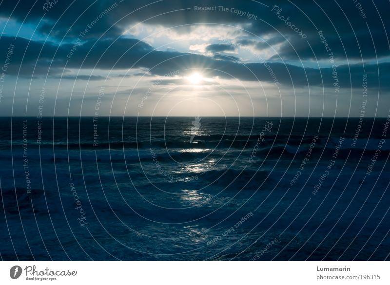 new horizon schön Himmel Sonne Meer blau Sommer Strand Ferien & Urlaub & Reisen Wolken Ferne Erholung Freiheit Stimmung Kraft Wellen glänzend