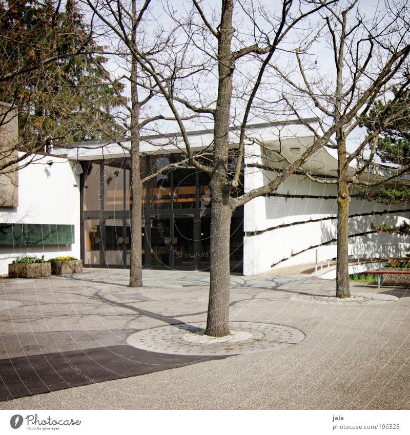 bäume Baum Gebäude Architektur gut Bauwerk viele
