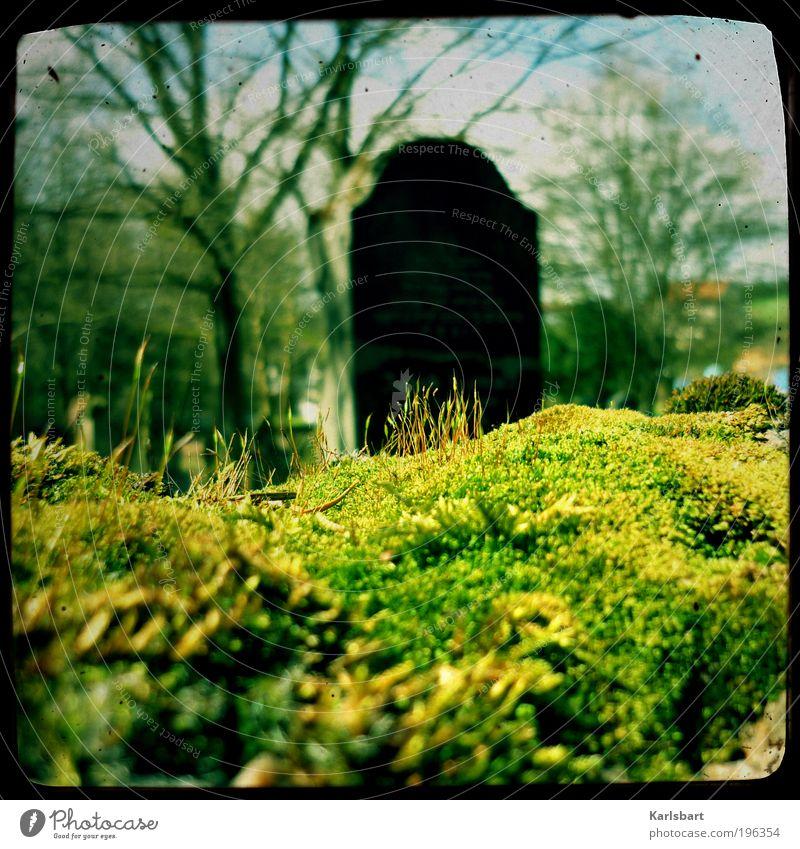 graveyard. poem. Natur Baum ruhig Leben kalt Herbst Tod Frühling Garten Stein Traurigkeit Lifestyle Schriftzeichen Zeichen Ruine Ruhestand