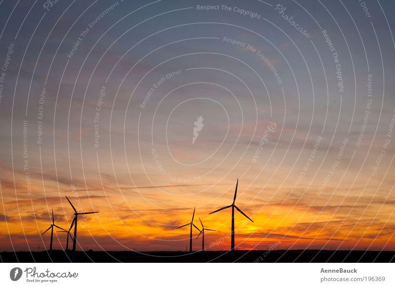 Abendwind Technik & Technologie Fortschritt Zukunft Energiewirtschaft Erneuerbare Energie Windkraftanlage Umwelt Natur Landschaft Luft Himmel Wolken Horizont