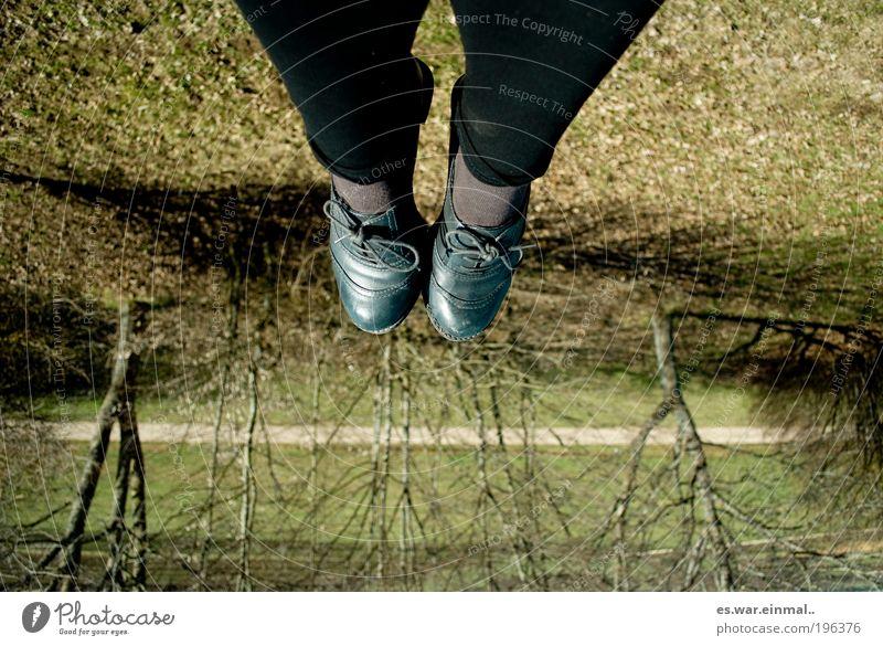 upside.down Fuß Schönes Wetter Baum Wiese hängen hocken liegen sitzen Fröhlichkeit Zufriedenheit Farbfoto Tag