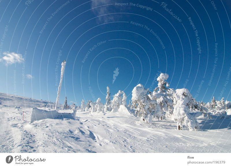 luosto V Ferien & Urlaub & Reisen Tourismus Ausflug Ferne Freiheit Winterurlaub Wintersport Skier Skipiste Natur Himmel Wolken Wetter Schönes Wetter Schnee