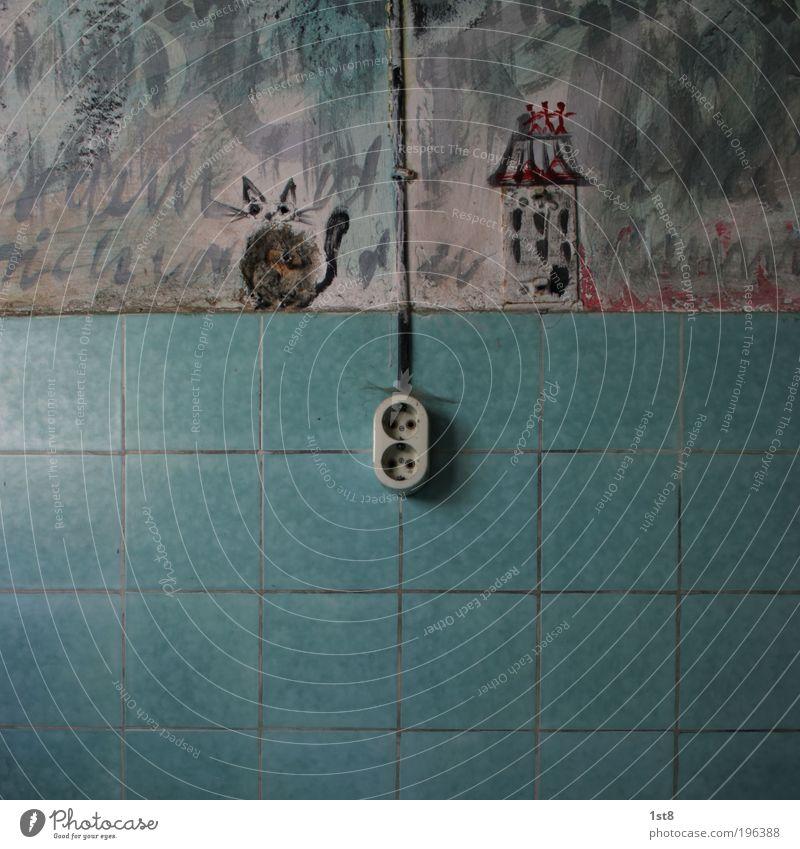 Katze im Krieg blau Haus dunkel Tod Stein Beton Elektrizität Frieden Sauberkeit Fliesen u. Kacheln Blut Spannung Steckdose Gebäude
