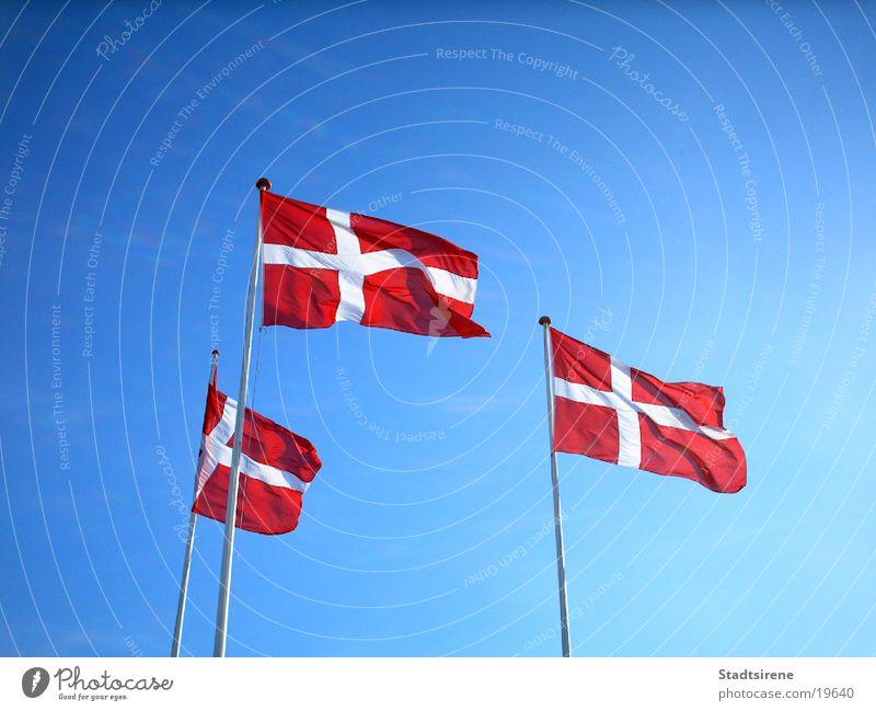 Flaggen im Wind Ferien & Urlaub & Reisen Sommer Himmel Verkehr Fahne rot weiß Ausland Dänemark Blauer Himmel Dannebrog Farbfoto Außenaufnahme Tag