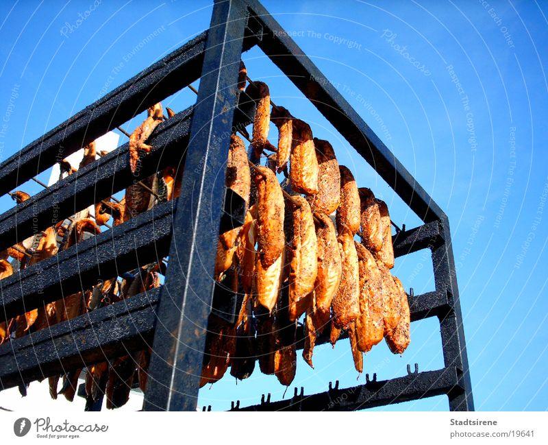 Lecker Räucherfisch! Fisch Ernährung Ferien & Urlaub & Reisen frisch geräuchert Dänemark Farbfoto Außenaufnahme Tag