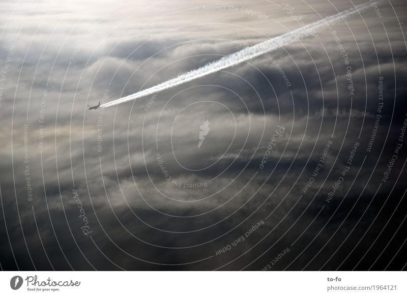 Über den Wolken... Luftverkehr Flugzeug Passagierflugzeug fliegen Geschwindigkeit Himmel Geschwindigkeitsrausch Kondensstreifen Gedeckte Farben Außenaufnahme
