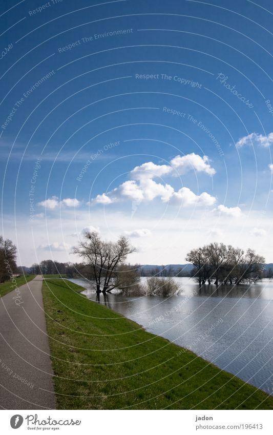 Flusslandschaft II Natur Wasser Himmel Baum blau Wolken Frühling Landschaft Umwelt Sicherheit Tourismus Fluss Unendlichkeit Schönes Wetter Oder Brandenburg