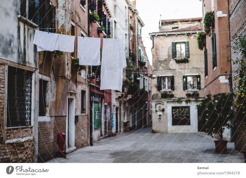 Waschtag III - weiß ruhig Ferien & Urlaub & Reisen Tourismus Sightseeing Städtereise Venedig Italien Stadt Stadtzentrum Altstadt Haus Fassade Fenster Tür Straße