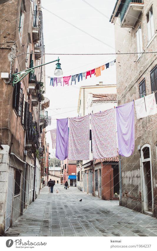 Waschtag - lila und bunt harmonisch ruhig Häusliches Leben Mensch Venedig Italien Stadt Stadtzentrum Altstadt Haus Einfamilienhaus Fassade Fenster Tür