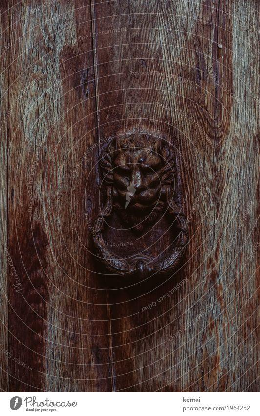 Der Löwe Städtereise Venedig Italien Haus Tür Türklopfer Holztür Rost alt authentisch außergewöhnlich dunkel schön braun Löwenkopf Ornament