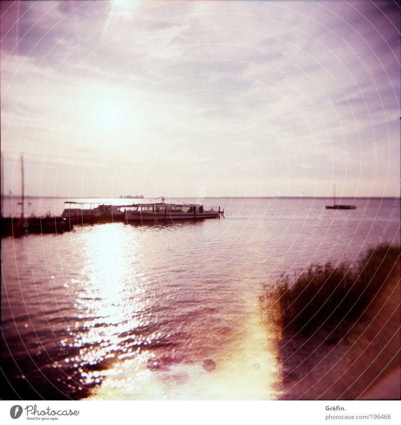 Frühlingserwachen Himmel Natur Wasser Sonne Sommer Meer ruhig See rosa Ausflug Tourismus Idylle Kitsch violett Schönes Wetter Seeufer