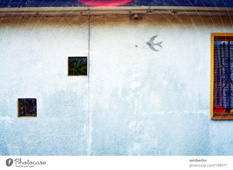 Eine Schwalbe macht wieviel Sommer? Haus Erholung Fenster Wand Garten Vogel Stadtteil Gardine Schrebergarten Wochenende Luke Loggia Gartenhaus Schwalben