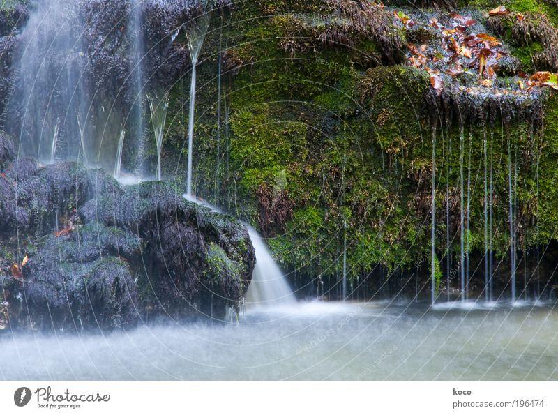 Wasserfall Natur Sommer Herbst Moos Wald Urwald Flussufer nass schön braun grau grün Farbfoto Außenaufnahme Menschenleer Tag Bewegungsunschärfe Totale