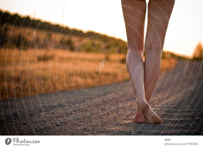 am baggersee I Ferien & Urlaub & Reisen Ausflug Sommer Sonne feminin Junge Frau Jugendliche Beine Sand Sonnenaufgang Sonnenuntergang Sonnenlicht Schönes Wetter