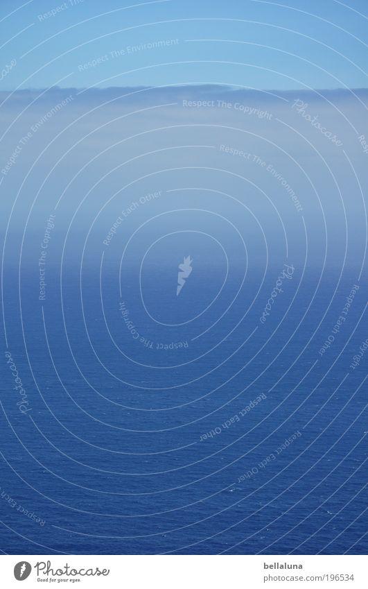 Wolken und Me(h)er Natur Wasser schön Himmel Meer Wärme Landschaft Umwelt Horizont Insel Klima Schönes Wetter Atlantik Morgen Gewitterwolken