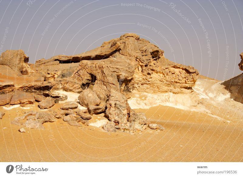 Wer sieht den Hund? Natur Himmel Tier Hund Sand Landschaft Umwelt Felsen Erde Afrika liegen Wüste Schönes Wetter Originalität Wolkenloser Himmel