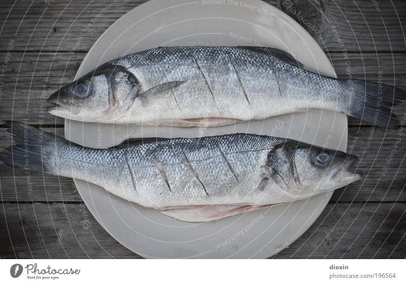 Fische Lebensmittel Ernährung Teller Freizeit & Hobby Angeln Natur Tier Wildtier Totes Tier Schuppen 2 Tierpaar Zeichen liegen kalt blau grau silber weiß