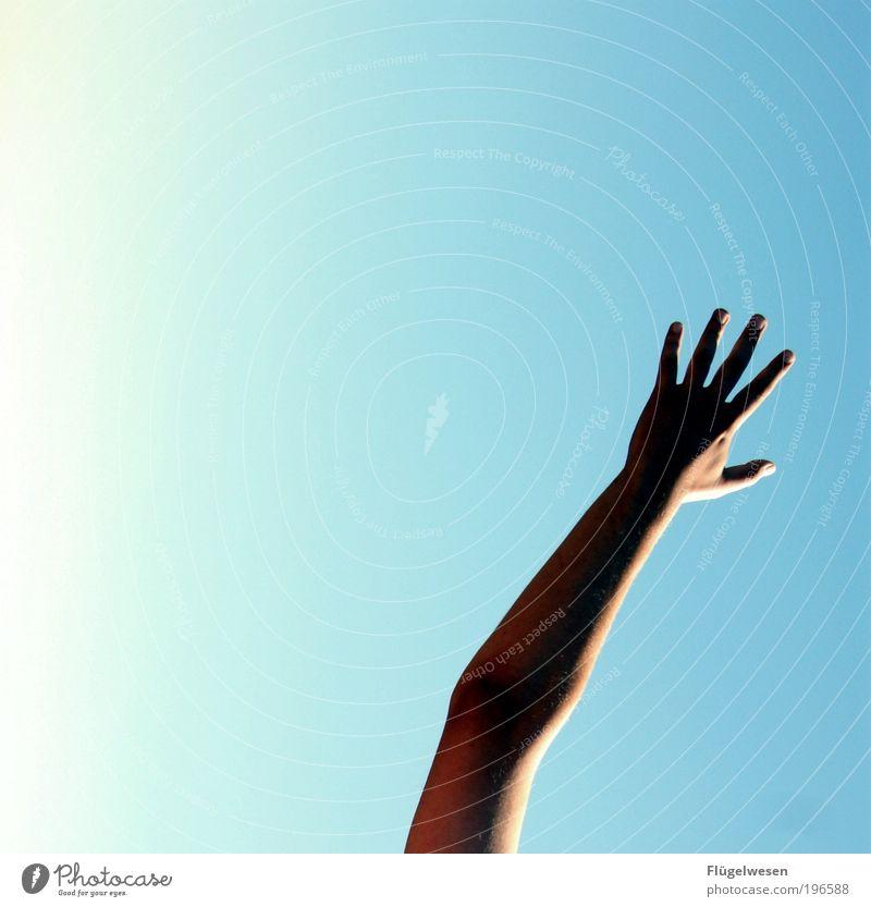 Den Himmel berühren Hand Ferien & Urlaub & Reisen Freude Leben Freiheit Freizeit & Hobby Arme Haut Finger Erfolg Lifestyle Sicherheit Vertrauen genießen