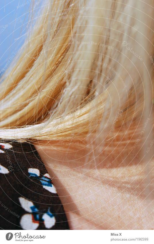 Haare schön feminin Junge Frau Jugendliche Haut Haare & Frisuren 1 Mensch 18-30 Jahre Erwachsene blond Nacken Hals Farbfoto mehrfarbig Außenaufnahme Nahaufnahme