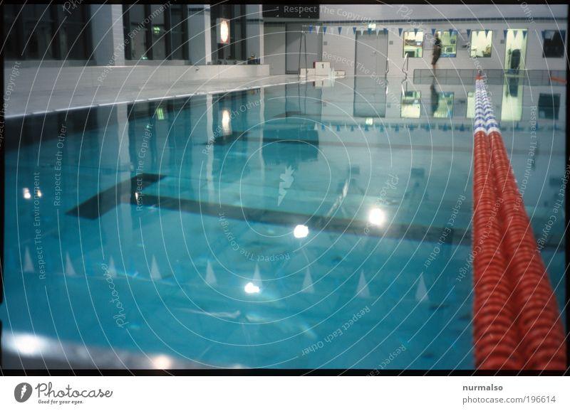 den Freischwimmer machen Mensch Wasser schön ruhig Erholung Umwelt Sport Freizeit & Hobby glänzend Geschwindigkeit Erfolg Schwimmbad Schwimmsport Bauwerk