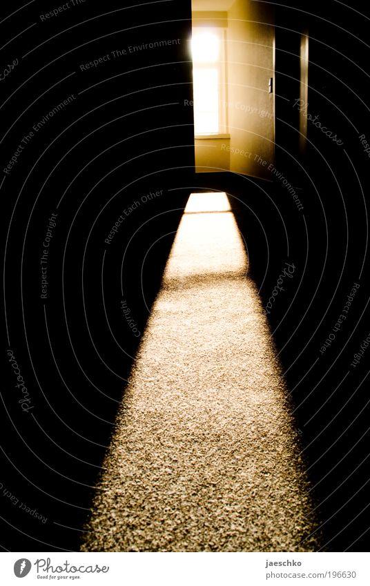 Ich will raus! Sonne Einsamkeit dunkel Fenster schwarz Tod Wohnung träumen Tür ästhetisch Idee Neugier Hoffnung geheimnisvoll Trauer Platzangst