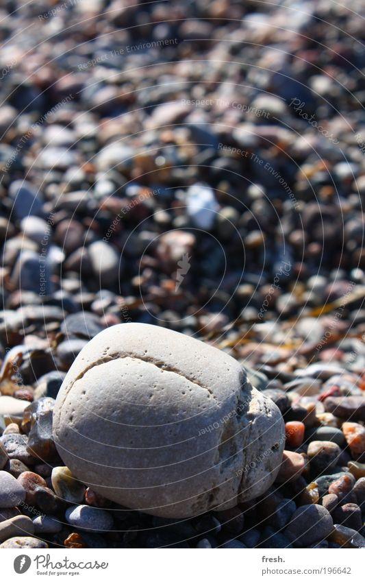 Verwechslung. Natur Wasser Ferien & Urlaub & Reisen Sonne Sommer Meer Strand Ferne Erholung Umwelt Glück Küste Stein frisch außergewöhnlich authentisch