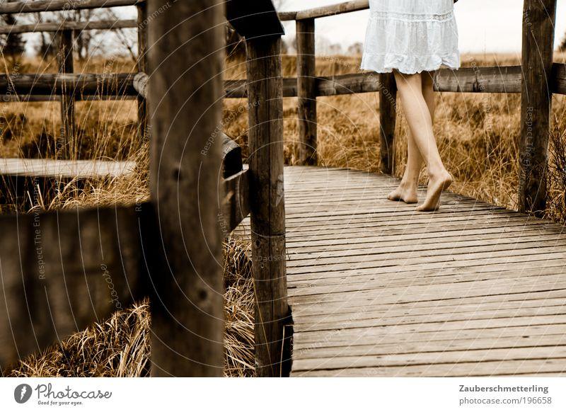 Barfuss Sinnesorgane ruhig feminin Junge Frau Jugendliche Beine Fuß 1 Mensch 18-30 Jahre Erwachsene Natur Herbst Gras Moor Sumpf Holz gehen authentisch dünn