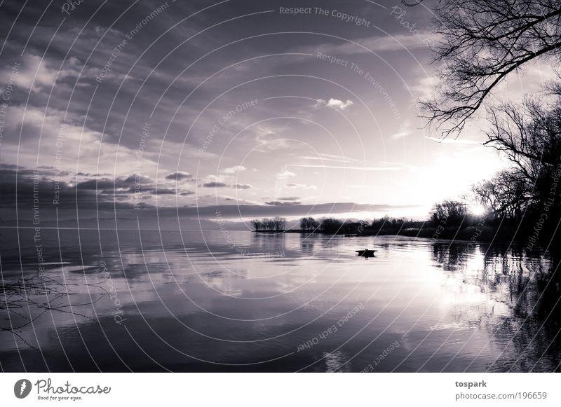 Morgens am See Himmel Natur Wasser Baum Ferien & Urlaub & Reisen Sonne Wolken ruhig Ferne Erholung Umwelt Landschaft Gefühle Wärme Stimmung