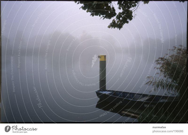 Optimaler Nebel Freizeit & Hobby Angeln Joggen Kunst Natur Landschaft Pflanze Tier Urelemente Klima Park Flussufer Bucht Havel Binnenschifffahrt Fischerboot