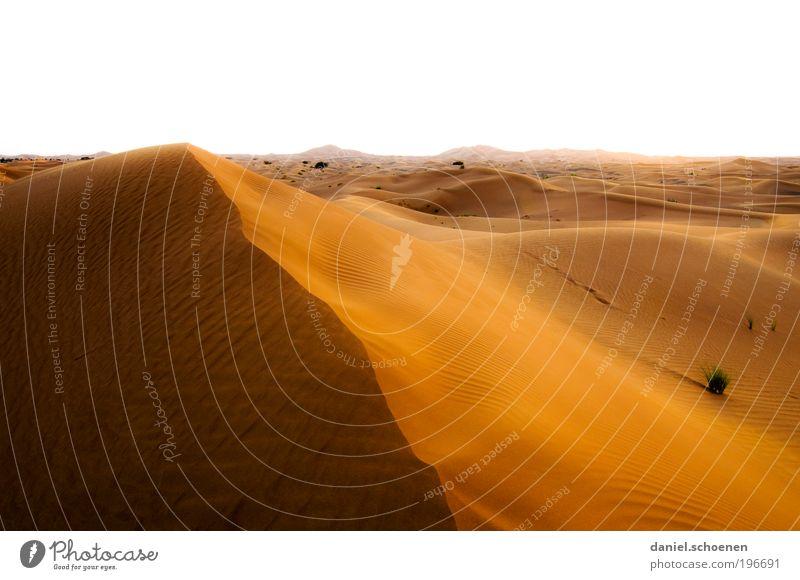 Sonnenenergie Teil 2 Ferien & Urlaub & Reisen Einsamkeit Ferne gelb Freiheit Umwelt Sand Wärme Horizont Klima einzigartig Wüste Vergänglichkeit Düne