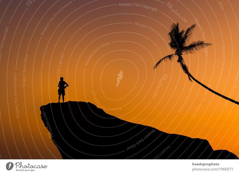 Silhouette von Mann, Felsen & Palme bei Sonnenuntergang Mensch Himmel Ferien & Urlaub & Reisen Sommer Baum Meer Erholung Einsamkeit Ferne Strand Erwachsene