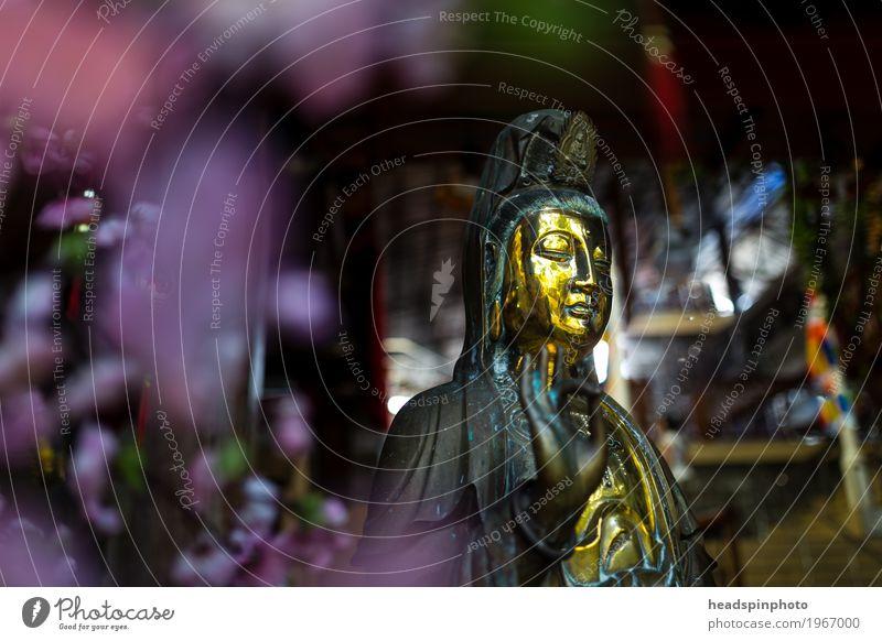 Goldene Buddha Statue mit Lila Blumen Bokeh Erholung Religion & Glaube Liebe Zufriedenheit Ewigkeit violett Frieden Asien Gelassenheit Meditation Skulptur