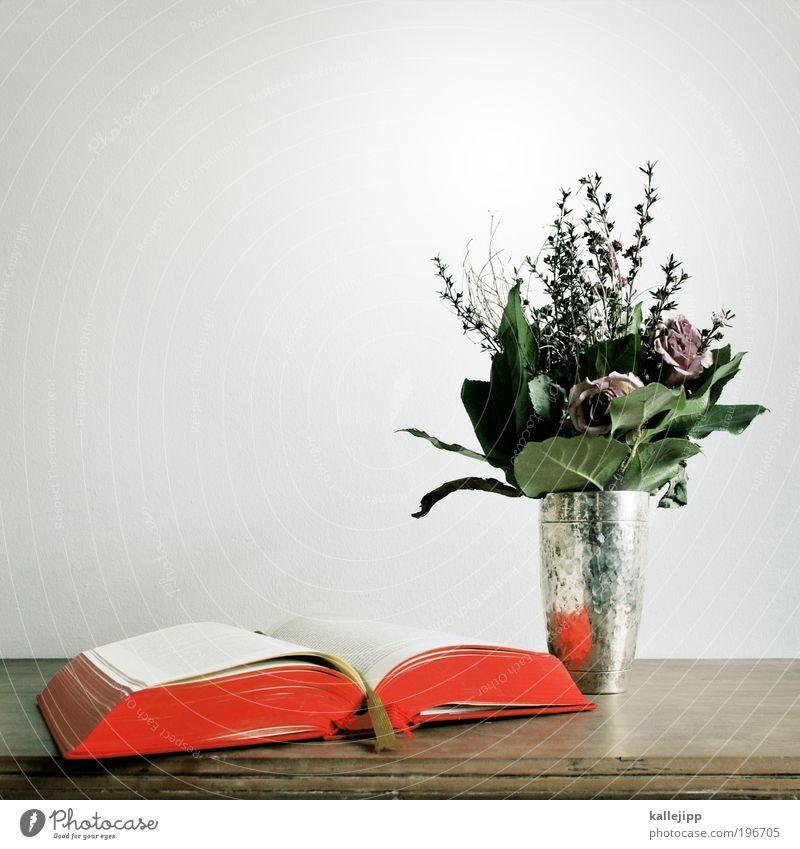 märchenstunde Lifestyle elegant Freizeit & Hobby Dekoration & Verzierung Tisch Bildung Rose Blatt Blüte Papier Blumenstrauß Buch Buchstaben Vase Silber antik