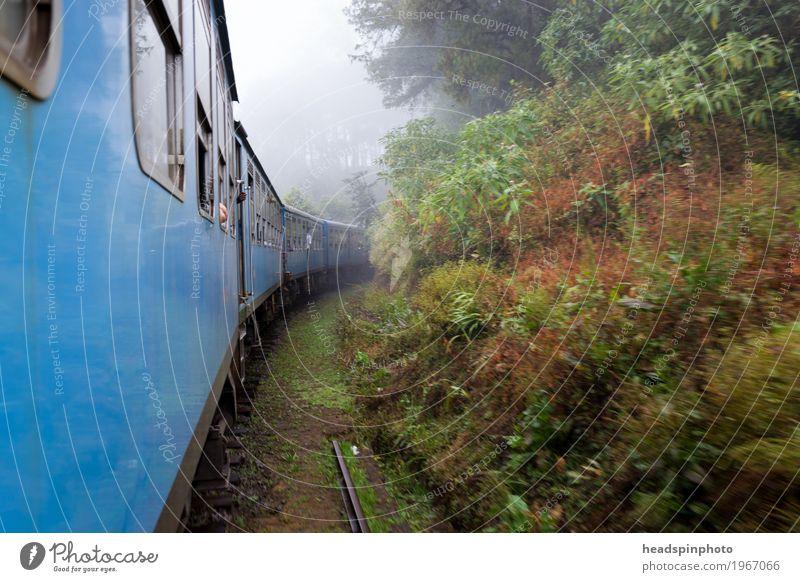 Zugfahrt durch Nebel in Sri Lanka Urwald Hügel Berge u. Gebirge Personenverkehr Öffentlicher Personennahverkehr Bahnfahren Schienenverkehr Lokomotive