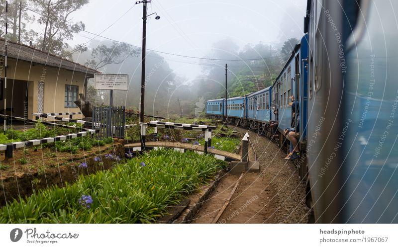 Zugfahrt in Sri Lanka Natur Ferien & Urlaub & Reisen blau Landschaft Einsamkeit Ferne Freiheit Tourismus Ausflug Geschwindigkeit Abenteuer Eisenbahn fahren