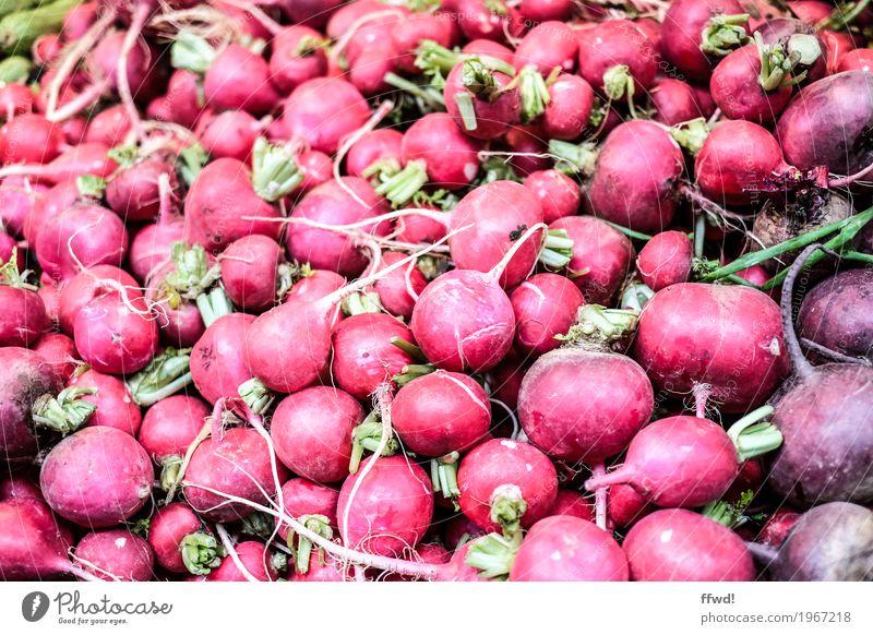 Radieschen Lebensmittel Gemüse Ernährung Bioprodukte Vegetarische Ernährung natürlich rund rot rein Qualität frisch Markt Marktstand Farbfoto Außenaufnahme