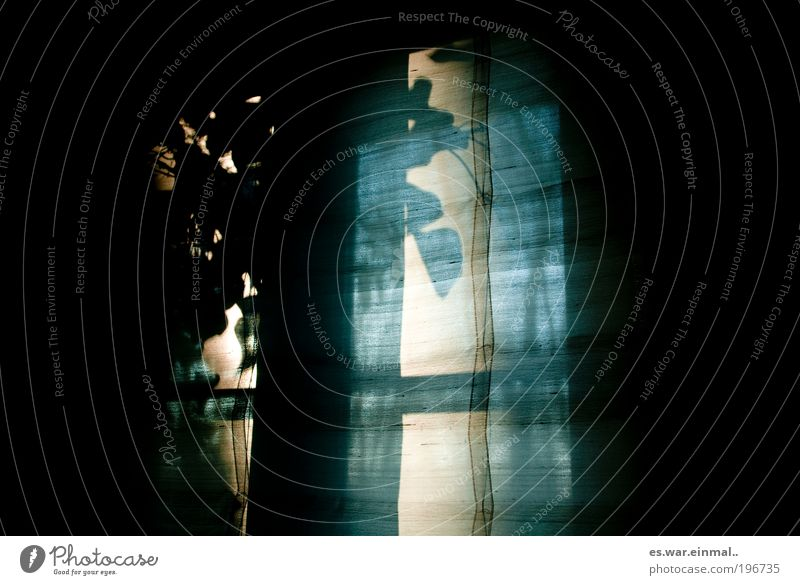 behind II. Häusliches Leben Vorhang Gardine Erholung dunkel Wärme Stimmung Warmherzigkeit Romantik Farbfoto Innenaufnahme Menschenleer Abend Dämmerung Licht